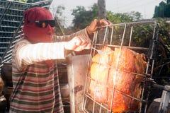 从玻璃的太阳烤猪肉 库存图片
