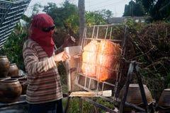 从玻璃的太阳烤猪肉 免版税库存图片