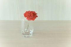 玻璃的罗斯,软的口气背景 免版税库存照片