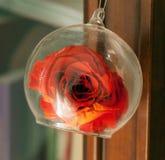 玻璃的罗斯 免版税图库摄影