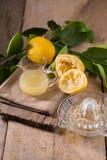 玻璃碗新近地被紧压的柠檬汁、柠檬剥削者和r 库存图片
