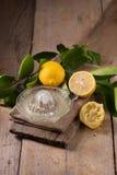 玻璃碗新近地被紧压的柠檬汁、柠檬剥削者和r 库存照片