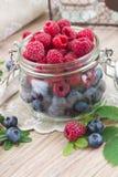 玻璃碗新鲜的莓果 免版税库存图片