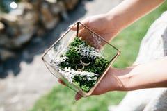 玻璃箱子在婚戒的手上 免版税库存照片