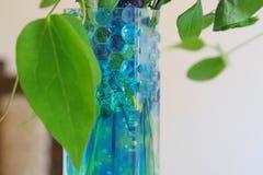 玻璃花瓶蓝色jellyball  图库摄影