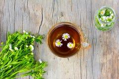 玻璃茶与春黄菊花的 免版税图库摄影