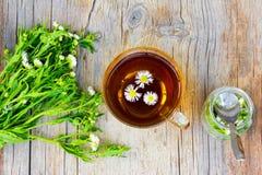 玻璃茶与春黄菊花的 免版税库存照片