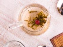 玻璃茶壶用花中国人茶 免版税库存图片
