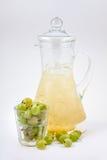 玻璃蒸馏瓶用鹅莓汁和冰 免版税库存图片