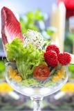 玻璃觚新鲜的沙拉由水果和蔬菜做成 库存图片