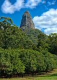 玻璃议院山,昆士兰澳大利亚 库存图片