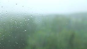 玻璃雨 股票录像