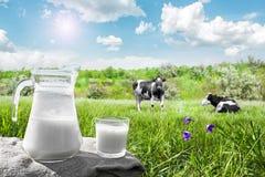 玻璃水罐用牛奶和一块玻璃在草反对美丽如画的绿色草甸背景有花的 图库摄影