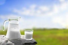 玻璃水罐用牛奶和一块玻璃在草反对美丽如画的绿色草甸背景有花的 免版税库存照片