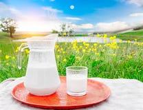 玻璃水罐用牛奶和一块玻璃在草反对美丽如画的绿色草甸背景有花的 免版税库存图片