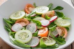 从黄瓜、萝卜和蕃茄的春天沙拉在丝毫 库存照片