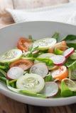 从黄瓜、萝卜和蕃茄的春天沙拉 库存照片
