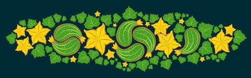 黄瓜与花和叶子的佩兹利装饰品 库存图片
