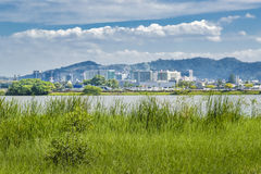 瓜亚基尔都市风景 库存照片