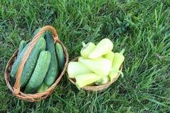 黄瓜和胡椒在篮子在草 免版税库存图片