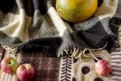 瓜和苹果在秋天背景 免版税库存图片