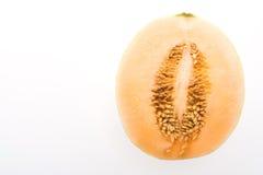 瓜或甜瓜 免版税图库摄影