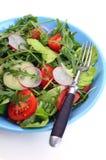 黄瓜新鲜的莴苣混合沙拉蕃茄蔬菜 免版税库存照片