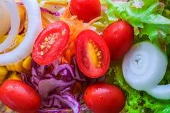 黄瓜新鲜的莴苣混合沙拉蕃茄蔬菜 免版税图库摄影