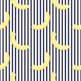 瓜片断  水平的镶边夏天无缝的样式 使用为设计表面,织品,纺织品,包装的纸, 向量例证