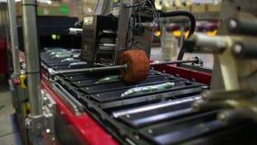 黄瓜的包装机在工厂 股票视频