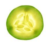 黄瓜被隔绝的白色背景 库存照片