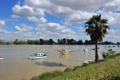 瓜达尔基维尔河河,它穿过真皮del里约,塞维利亚省,安大路西亚,西班牙 库存照片