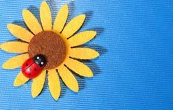 瓢虫向日葵 免版税图库摄影