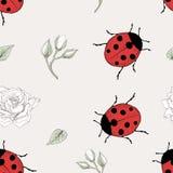 瓢虫和玫瑰无缝的样式 免版税库存照片