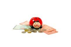 瓢虫坐在林吉特马来西亚顶部的金钱银行 查出 免版税图库摄影