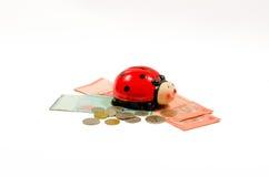 瓢虫坐在林吉特马来西亚顶部的金钱银行 查出 库存图片