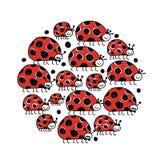 瓢虫家庭,您的设计的框架 库存图片