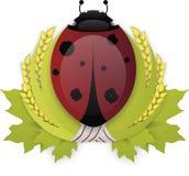 瓢虫月桂树花圈 免版税图库摄影