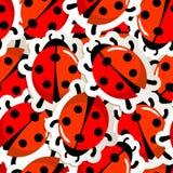瓢虫模式红色 免版税库存照片