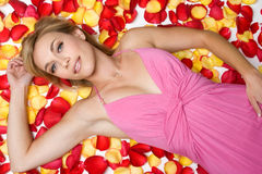 瓣玫瑰色妇女 库存图片