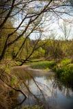 瓦尔塔河河,波兰 库存照片