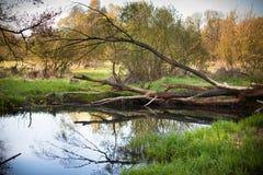 瓦尔塔河河,波兰 库存图片