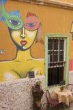 瓦尔帕莱索壁画  图库摄影