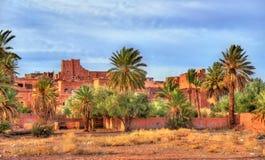 瓦尔扎扎特的,摩洛哥棕榈树丛 免版税库存照片