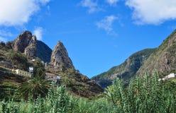 瓦尔Gran Rey视图的,戈梅拉岛风景,加那利群岛香蕉种植园 免版税库存照片