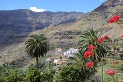 瓦尔GRAN REY,戈梅拉岛,西班牙:与露台的领域和棕榈树的多山和绿色风景 库存照片