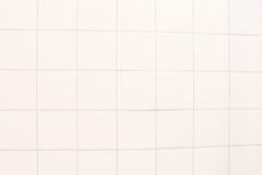 瓦片大理石地板背景 免版税库存图片