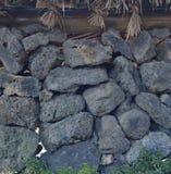瓦片火山的石头 库存照片