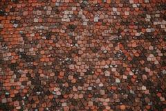 瓦片的五颜六色的样式在屋顶的 中世纪城堡瓦纹理 免版税库存照片