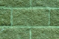 瓦片砖墙被遮蔽的云杉的抽象背景  石墙纹理表面  库存图片